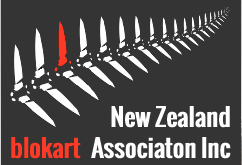New Zealand blokart Association (NZBAI)